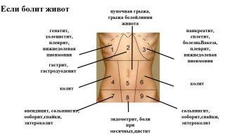 Причины болей в нижней части живота у женщин