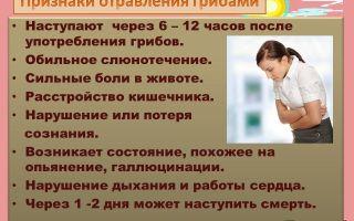 Симптомы и последствия отравления солеными грибами